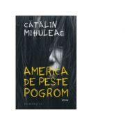 America de peste pogrom - Catalin Mihuleac imagine librariadelfin.ro