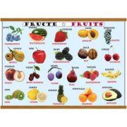 Plansa legume / fructe, plastifiata cu agatatoare imagine librariadelfin.ro