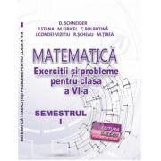 Matematica, exercitii si probleme pentru clasa a VI-a, semestrul I, 2020 - Delia Schneider imagine librariadelfin.ro