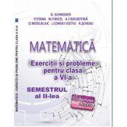 Matematica. Exercitii si probleme clasa a VI-a Semestrul al II-lea - Delia Schneider imagine librariadelfin.ro
