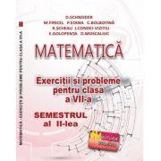 Matematica. Exercitii si probleme clasa a VII-a Semestrul al II-lea - Delia Schneider imagine librariadelfin.ro