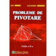 Probleme de pivotare - Dan Branzei imagine librariadelfin.ro
